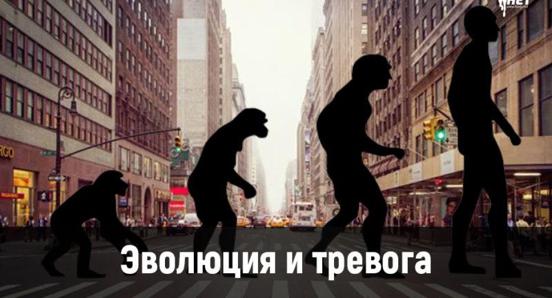 Эволюция и тревога